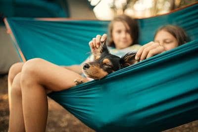 dog and kids in hammock