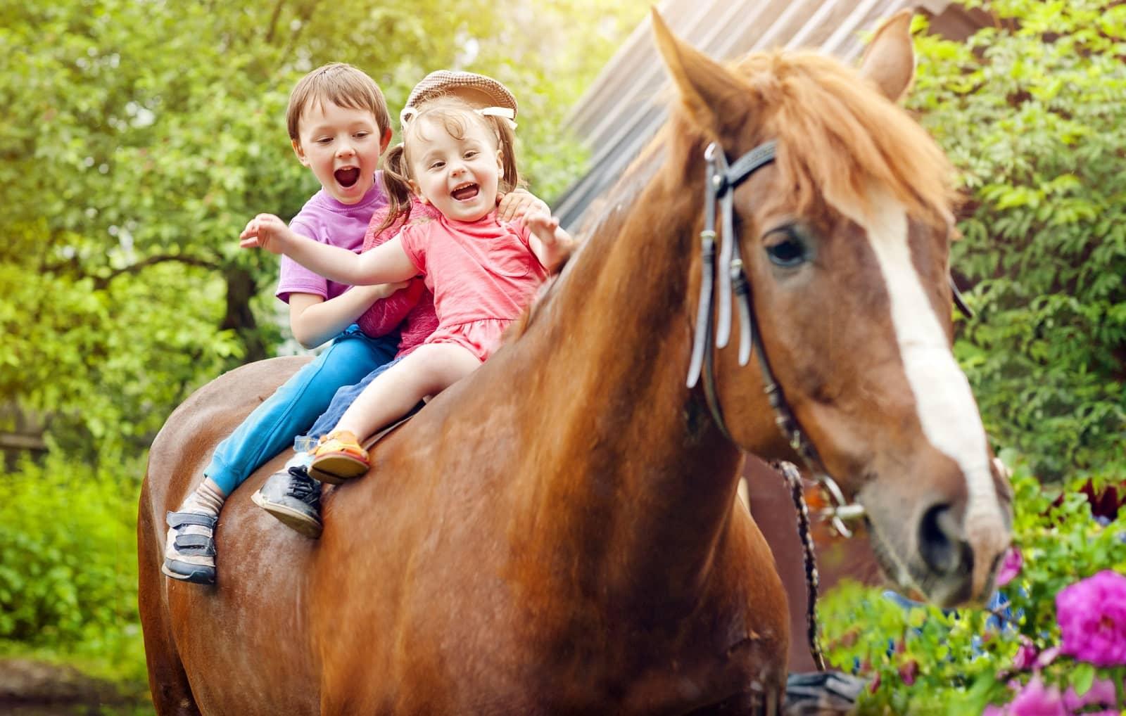 Siblings riding horse