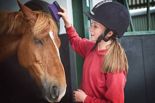 Safety at Equestrian facilities