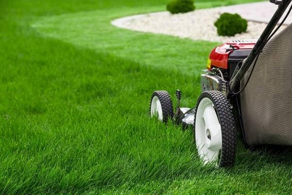 Lawn mower equipment
