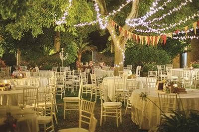 Outdoor reception with lights in trees